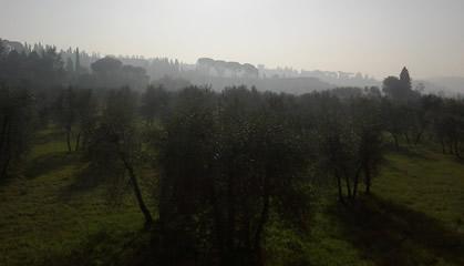 Guida di Firenze percorsi nella Natura